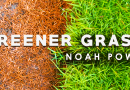 Dancehall Artist Noah Powa New Single 'Greener Grass' Hits Top 20 on Reggae Charts