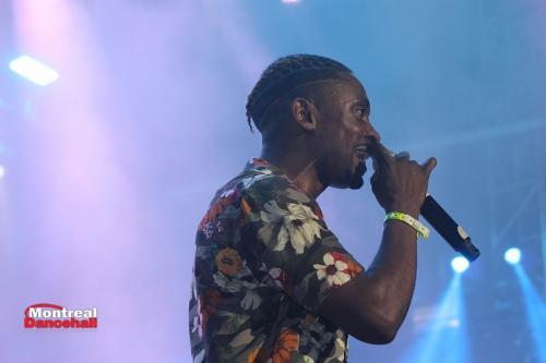 reggae_sumfest_2019_-1